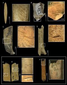 Foto di archaeology.org